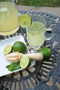 egyptian mint limeade (23).JPG edit