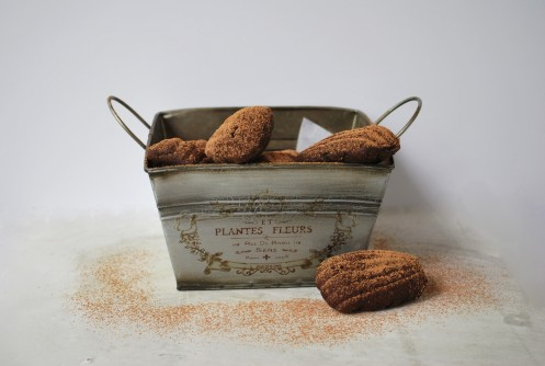 Dark Chocolate Spiced French Madeleine Cakes (55).JPG edit