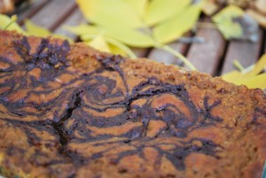 Chocolate pumpkin bread (8).JPG edit