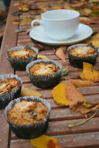 paleo pumpkin walnut cranberry muffins (11).JPG edit
