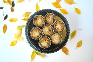 paleo pumpkin walnut cranberry muffins (2).JPG edit