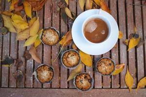 paleo pumpkin walnut cranberry muffins (26).JPG edit