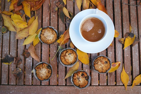 paleo pumpkin walnut cranberry muffins (26).JPG edit
