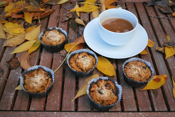 paleo pumpkin walnut cranberry muffins (30).JPG edit