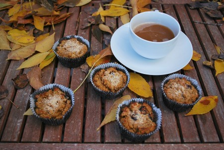 paleo pumpkin walnut cranberry muffins (32).JPG edit
