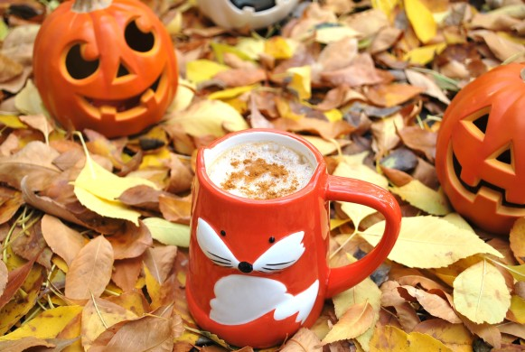 pumpkin spice latte (3).JPG edit