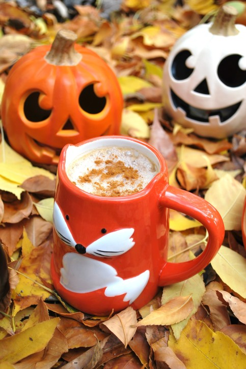 pumpkin spice latte (9).JPG edit